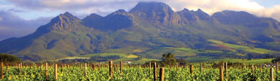 RCO-Sonderreise Südafrika
